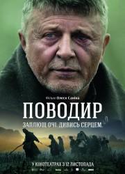 povodyr-2013-poster